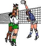 volleynet